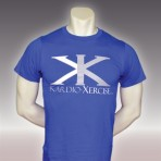 Mens tee shirt 100% cotton (Blue)